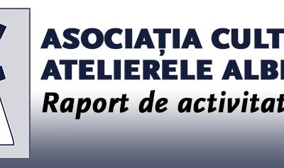 Raport de activitate pe 2015